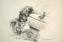 Пекинес и другие собаки