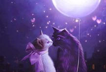 Buonanotte, gatti