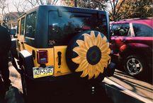 sunflowers ✨