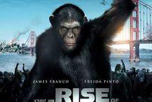 nice movie's