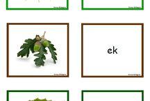 Skogsmemory/uppgifter förskola