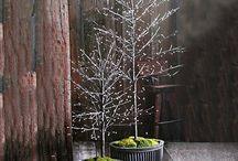 GPP Holiday Decoration Ideas / Holiday Decorating Ideas / by Brandi Andrews
