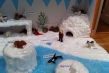 Arctic Tundra Project
