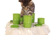 Cool Pet Products / by Vicki Sweetheimer-Wirlo