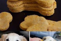Healthy doggies / food, snacks fun, all for the dogs