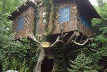 Ağaç Evler