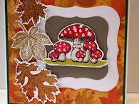 Paddenstoelen/herfst
