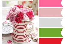 color / color palettes for cookie, home, and outfit inspiration ♥