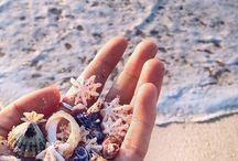 Beach~Sea