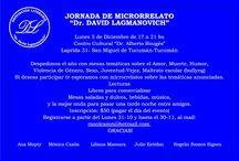 Joranada de microficción Dr David Lagmanovich