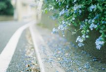 Blue my life!