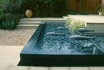 Water Features / by Akemi Gardens