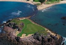 Hit the Greens! / Grab your clubs and get ready for a round of golf at Four Seasons Resort Punta Mita, a breathtaking tropical landscape of white sand, palm trees and stunning ocean views. Tee off on this world-class golf course that boasts the world's only natural island green. Tips from the pro on how to improve your game! / by Four Seasons Resort Punta Mita