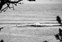 Surfing is awesome / Best waves ever!