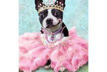 Custom Pet Portrait Paintings On Canvas