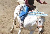 Astuces Équitation / Des astuces et p'tits trucs pour l'équitation.