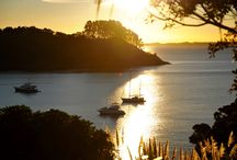 Holiday accommodation on Waiheke Island Auckland NZ / Beautiful properties in stunning locations