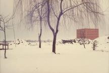 neve a Modena
