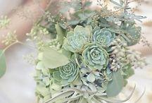 Fiori, piante & giardini