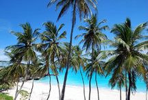 Barbados / by Lynn Goring-Crook