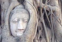L'ASIE avec Destination sur Mesure / Spécialiste de toute l'Asie, pour des vacances qui vous ressemble, www.destinationsurmesure.com