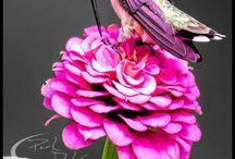 colibrì tattoo