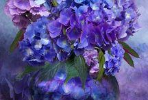 Çiçekler / Çiçekler