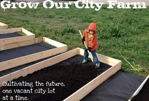 Sustainable Ideas / by Our City Farm