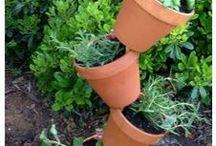 planter/krukker/haver