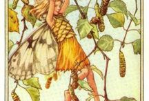 Artist Cicely Mary Barker