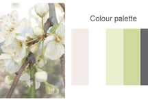colorful color schemes