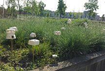Insecthomes, birdhouses etc.