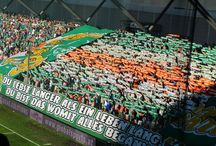 Rapid Wien - Celtic Glasgow