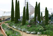 Garden - planting inspiration