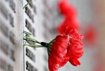 Paint Pinterest Red For Remembrance Day (Nov. 11 in Canada)