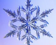 Snowflake Happiness / by Trudi Fagg