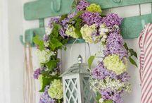 Blommmor & växter