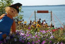 Scarecrow Fest in Phelps, Wisconsin / Phelps Annual Scarecrow Fest is a fun day for all ages, with pumpkin chuckin', arts and crafts, sea plane rides, food, and more. Visit Phelps in September to join in this small-town celebration of the fall harvest season, which wouldn't be complete without scarecrows! / by Phelps WI Chamber of Commerce