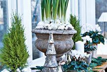 Christmas flowers and greenery