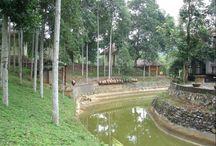 Truong Xuan Resort | Ha Giang