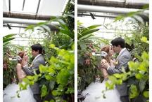 Green house wedding portraits