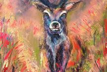 My stag paintings