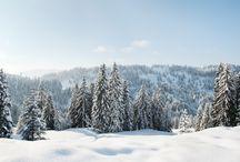 Tendances même au ski ! / Les vacances de février approchent, les montagnes s'enneigent... Rien de mieux que d'aller passer quelques jours au ski ! Et le look alors ?