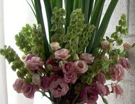 flores en mi casa