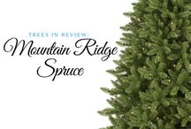Trees in Review / Get to know more about Christmas Tree Market's artificial Christmas trees with these series of reviews from our blog.