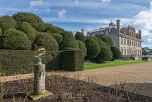 Kingston Lacy Home and Gardens