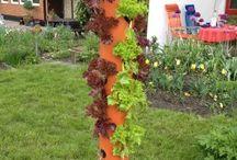 Ideen rund um den Garten