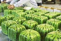 watermelon in box