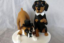 Cachorros de biscuit