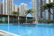 Mahagun Mywoods Noida Extension- Mahagun Mywoods / Mywoods is exclusively tailored to suit your lifestyle and the project offers 2bhk, 3bhk and 4 bhk apartments/flats and style is the main focus in this project that is located at hustle free Noida Extension. http://www.mahagunmywoodsnoidaextension.com/